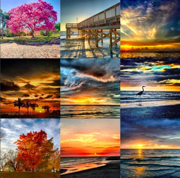 Instagram collage showing best nine images of 2016.