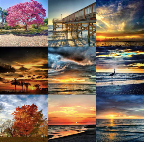 Instagram collage showing best nine images of 2016.